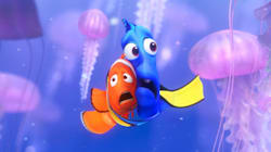 'Finding Nemo' Hurt Clownfish. Will The Same Happen With