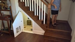 Woman Turns Staircase Cupboard Into Swinging Chihuahua Bachelor