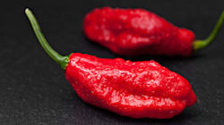 Ghost Pepper Chilli-Eating Contest Leaves Man With Hole In His