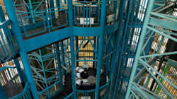 Photos Show How Different Prisons And Jails Look Around The