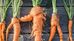 Eating Ugly Produce Might Actually Be Better For Your