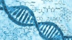 Parte 2: Con que mis cromosomas