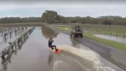 Man Wakeboards, Kangaroos Skip Through SA