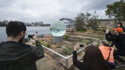 Sculpture At Barangaroo A Big Hit With