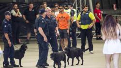 Pill Testing, Drug Sniffer Dog Removal Motion Passes