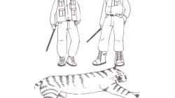 Diego ou la disparition annoncée des espèces