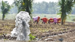 Small Pumps: A Panacea For Small Farmers In Groundwater Rich States Like Assam, Jharkhand And
