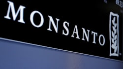 Foreign Seed Firms Team Up To Oppose New India GM Crop