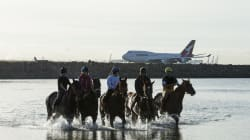 Airlines Are Like A 'Horse,' Says Aviation Minister On Why 32 Airports Lie