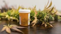 Diputados aprueban el uso de marihuana