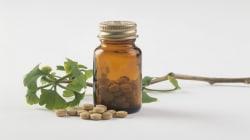 Ginkgo Biloba: Herbal Memory Booster Or