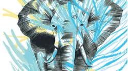 Journée mondiale de la vie sauvage... dans le plus grand