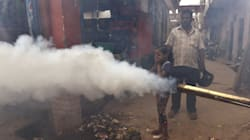 Delhi's Dengue And Chikungunya Mess Is Not Just The Government's Fault—It's Ours