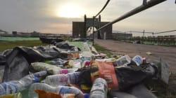 Art Of Living Event 'Completely Destroyed' Yamuna Floodplains: Expert