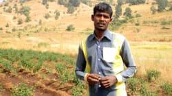 How Teamwork Is Helping Palghar's Tribal Farmers Reap