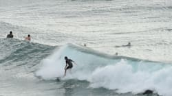 NSW Rolling Out Extra Drum Lines After Shark Attack On