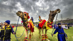 This Photographer Has Been Documenting The Sikh Festival Hola Mohalla For 18
