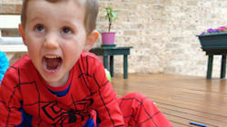 William Tyrrell Case: Police Investigate 600 Persons Of