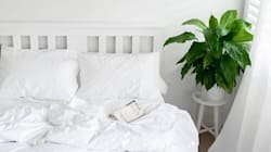 Budget-Friendly Ways To Style The Bed Of Your