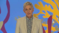Ellen DeGeneres Pleads For Australia To Protect The