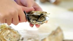 Today's The Day You Become An Oyster-Shucking