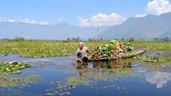 As Kashmir's Wular Lake Diminishes, So Do