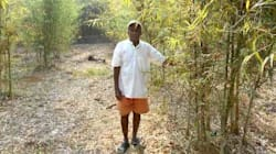 Bamboo Farming Is Changing The Rural Economy In