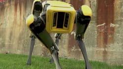 'Spotmini': el perro robot que impresiona incluso a quienes pasan de los