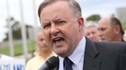 Anthony Albanese's Seat Of Grayndler Will Be This Election's