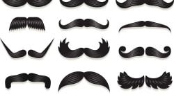 Movember... c'est