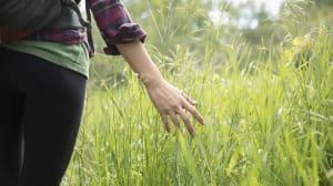 Cómo la naturaleza puede ayudarte a combatir el