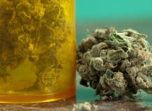 Cannabis Oil Huffpost Canada