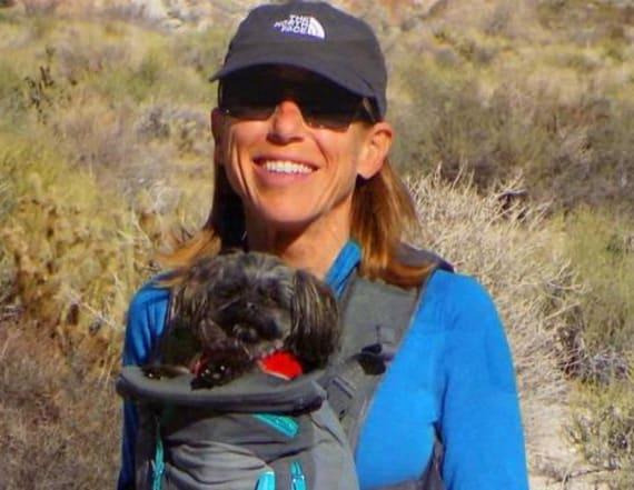 Missing California camper found alive
