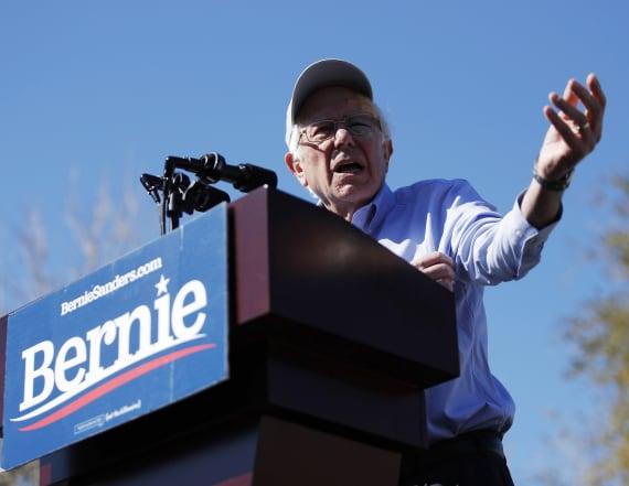 Democratic Socialists group endorses Bernie Sanders