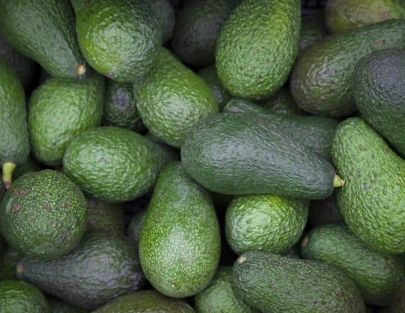 Hawaiian avocado wins Guinness World's heaviest