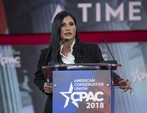 NRA's Dana Loesch wanted to star in a sitcom