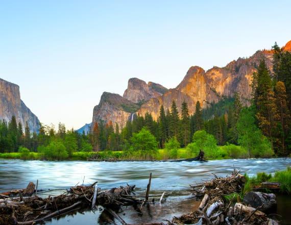 National Park Service Advisory Panel members resign