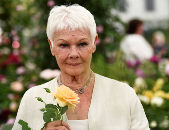 Judi Dench celebrates birthday with adorable cake
