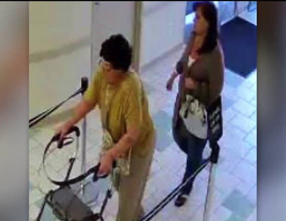 Elderly woman using walker accused of $20,000 theft