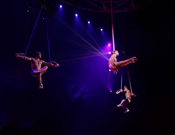 Cirque du Soleil star plunges to death during show