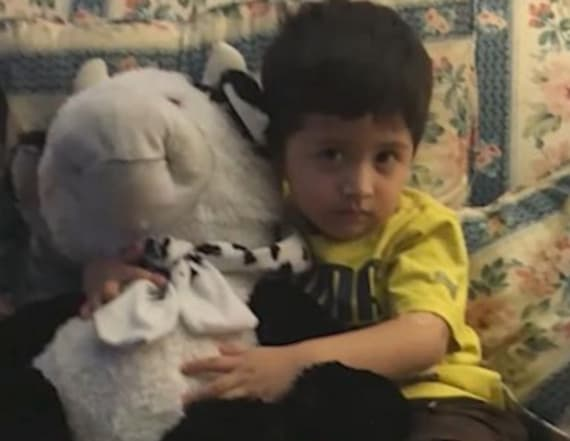 Stuffed toy saves life of boy who fell from window