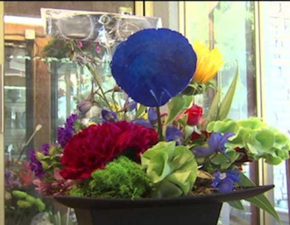 Florist gets creative with solar eclipse craze