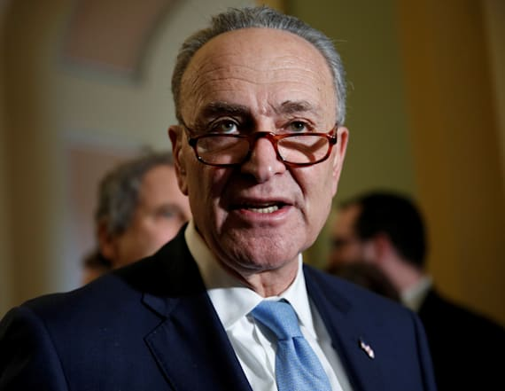 Schumer rips Trump's proposed cuts to gun program