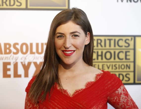 Actress Mayim Bialik slams NRA