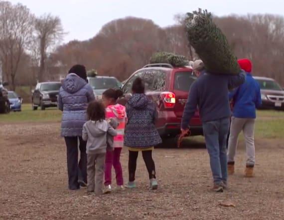 Christmas With the Christmas Tree Santas