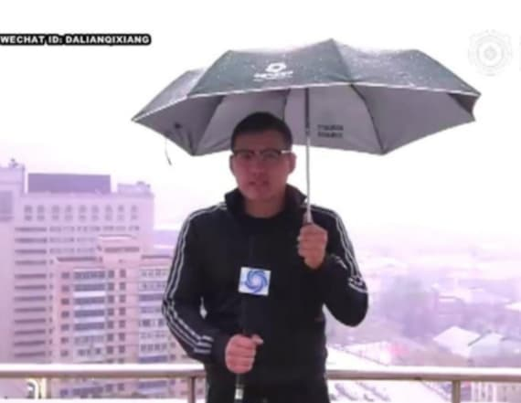 Weather forecaster startled by lightning strike