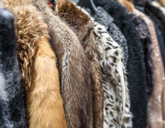 Gucci is officially going fur-free for 2018