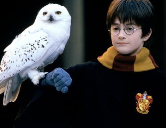 J.K. Rowling drops 'Harry Potter' bombshell