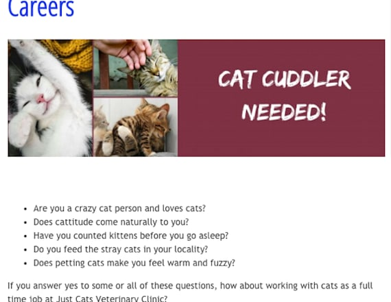 Vet clinic looking for professional 'cat cuddler'