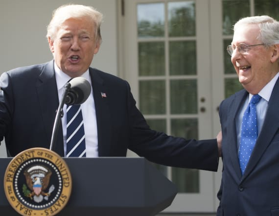 Trump, McConnell show GOP unity at White House